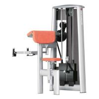 Gym80 SYGNUM Bizeps Curl Machine (3010)